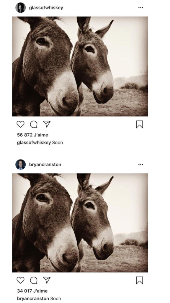 Post Instagram de @AaronPaul & @BryanCranston